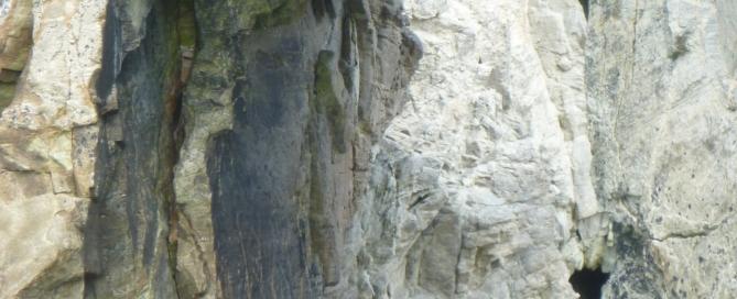 arche-port-blanc-quiberon-morbihan-bretagne-canoe-nature-cote-sauvage94