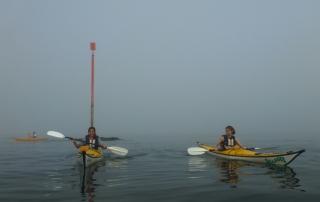 kayak-brouillard-quiberon10