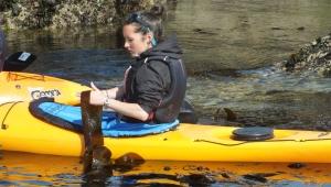 Laminaire-grande-maree-bretagne-morbihan-quiberon-sillages-algues