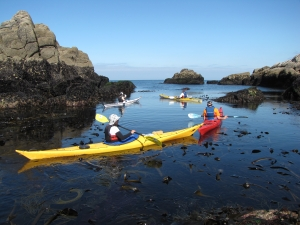 First experience trips-courses-sea-kayak-brittany-morbihan-quiberon-carnac-trinite-high-tides