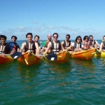 kayak-groupes-bretagne-morbihan-quiberon-carnac