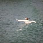 kayak-bretagne-morbihan-quiberon-carnac-vague-saut-surf-9