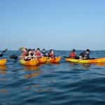 comites-entreprises-kayak-bretagne-morbihan-quiberon-carnac