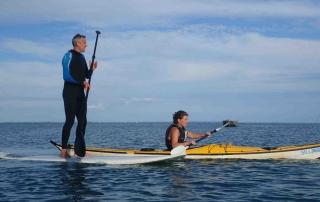 bretagne-morbihan-quiberon-stand-up-paddle-m-5
