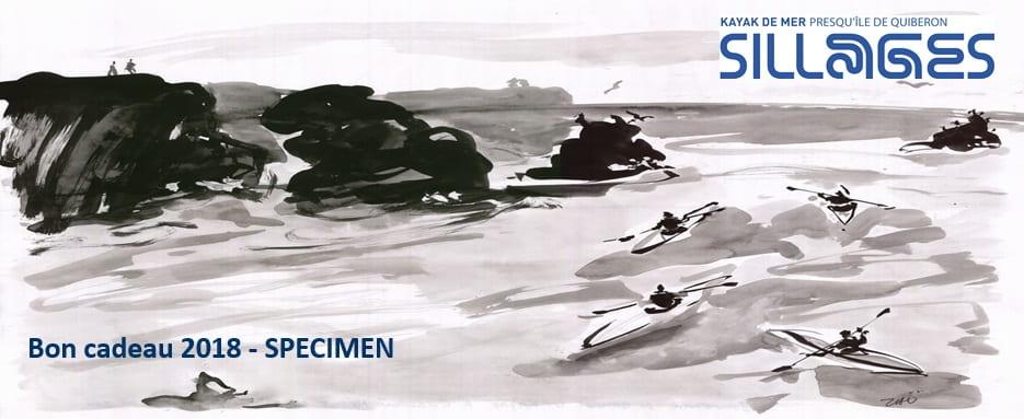 Bon cadeau 2018 kayak quiberon morbihan bretagne sillages