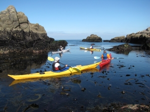 SILLAGES-Kayak-Stand-up-paddle-randonnées-stages-Quiberon-morbihan-bretagne-19