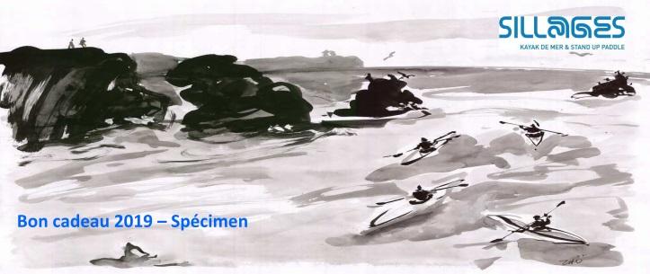 Bon cadeau 2019 kayak quiberon morbihan bretagne sillages