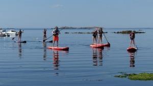 Sillages-Kayak-Paddle-Quiberon-morbihan4-min